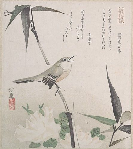 Roses and Bamboo with Nightingale by Teisai Hokuba