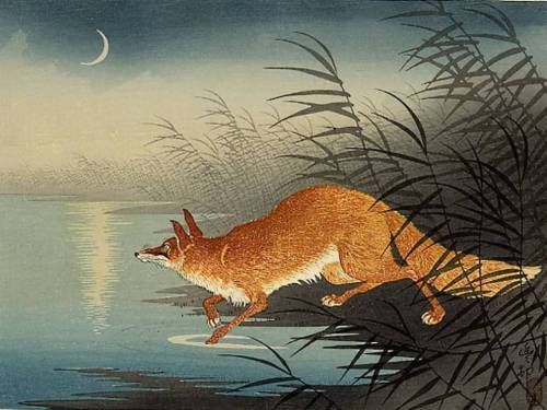 Fox in the Reeds by Ohara Koson