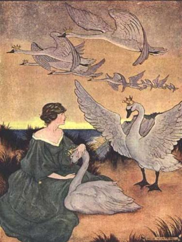 The Wild Swans by Helen Stratton